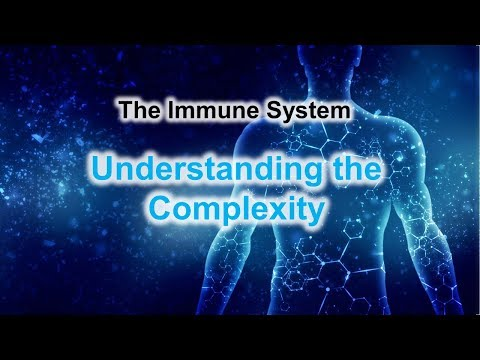 The Immun System - Understanding the Complexity