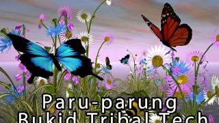Paru Parung Bukid - Dj Airnone
