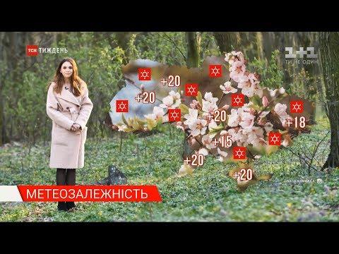 В Україні очікується