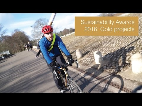 Sustainability Awards 2016: Office team gold projects