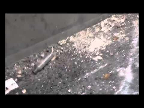 Пуля и гильзы 5.45 с места стрельбы Боцмана из АКС -74У.