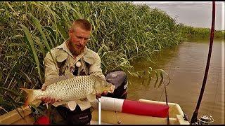 Ловля сазана - Охота - Рыбалка