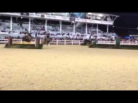 GSF Gypsy Queens- Devon Horse Show Hunt Teams 2015