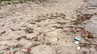 Мошенничество от Библио Глобус(Пляж от Библио глобус за 400$. Были в ужасе от грязи и антисанитарии творившимся в этом отеле и на прилегающей..., 2015-04-09T05:20:09.000Z)