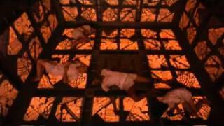 Cube (1997) - Trailer Castellano
