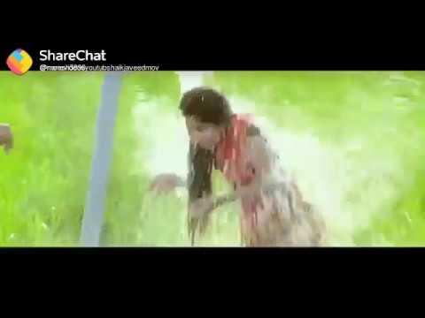 Whatsapp Status Video4 Sharechat