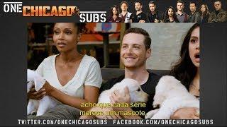 Puppy Casting for One Chicago (legenda pt-br)