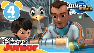 miles from tomorrowland full episodes movie 2017 miles from tomorrowland cartoon english 2017