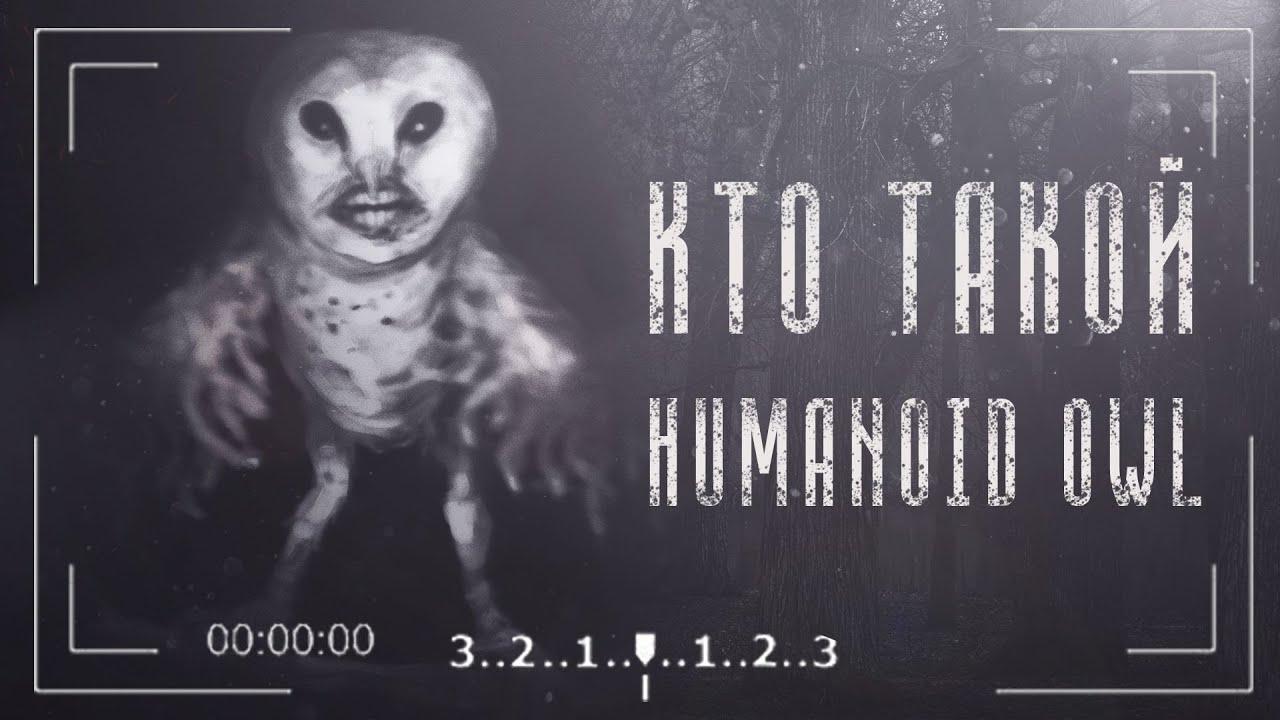 Кто такой Humanoid Owl | Сова Гуманоид | Человекоподобная Сова