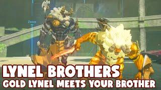 Zelda: White Lynel meets Gold Lynel