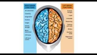 тренируй мозг! Гармонизация правого и левого полушария Low