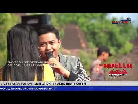 Duet Mesra Andy KDI Feat Nurma KDI | Delima | OM ADELLA