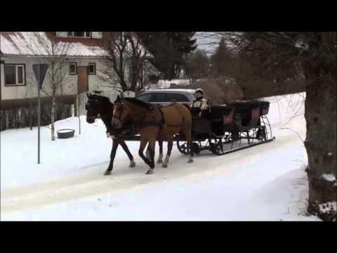 Sleighride II in Laane Tallid, Tori, Estonia