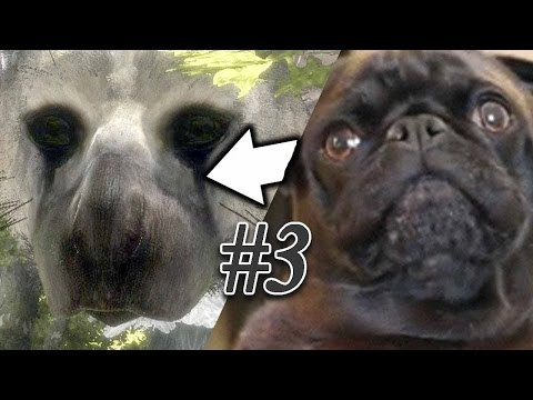 MY DOG IS IN THIS GAME?! - The Last Guardian - Part 3
