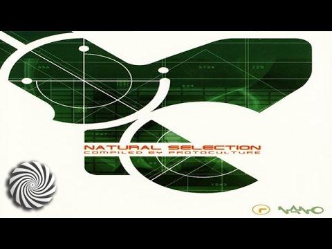 Silicon Sounds - Nexus 6 (Protoculture Remix)