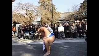 富士山本宮浅間大社で初めての横綱「鶴竜」の 土俵入り奉納が行われまし...