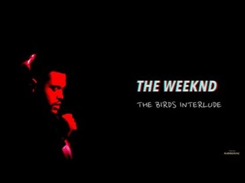 The Weeknd – The Birds Interlude (español) ||Marvins Fame