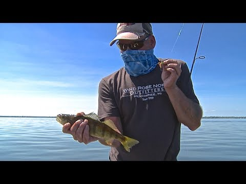Fishing For Jumbo Perch / Summer Techniques