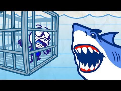 Pencilmate VS A SHARK!