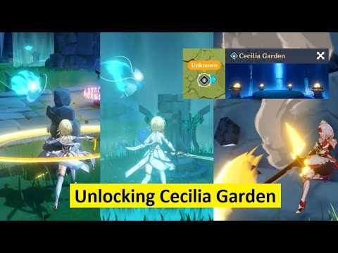 Genshin Impact Find Wandering Spirits Unlocking Cecilia Garden To Farm Weapon Ascend Material Youtube