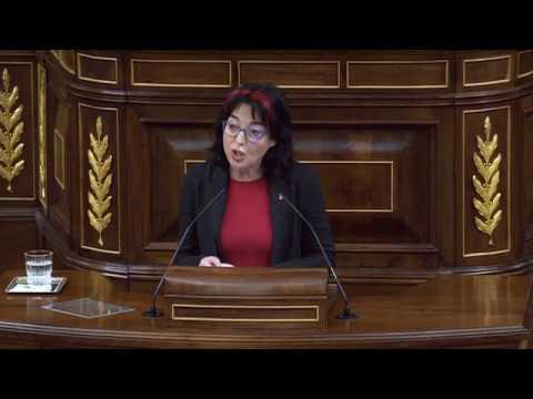Marisa Saavedra. Daños por temporales y costas. Pleno Congreso 11 febrero 2020