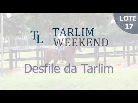 Lote 17 - Desfile da Tarlim (6º Leilão Tarlim)