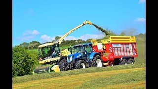 Silaging By The Sea With David Legg Contracting