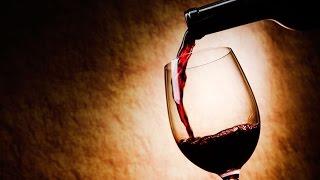 Repeat youtube video السبب الحقيقي لمنع  البرلمان العراقي بيع وشرب الخمر وتحريمة في الاسلام !!