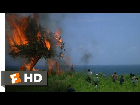 Lord of the Flies 311 Movie   Fire! 1990 HD