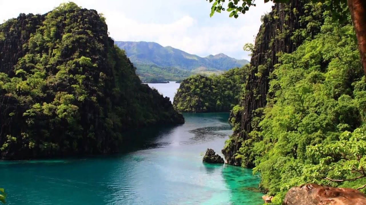 physical environment of philippines Factors which influence the rate at which a country may develop can be physical or human understanding the reason why a country may be in poverty is important, as it helps to understand what may help the country to develop.