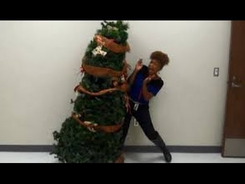 Students' Funny Christmas Tree Prank - YouTube