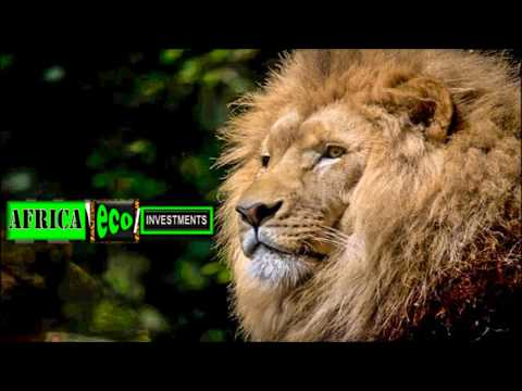 #AFRICA #VIDEOS #SWD #GREEN2STAY