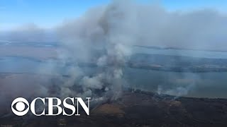 record-number-wildfires-burn-amazon-rainforest