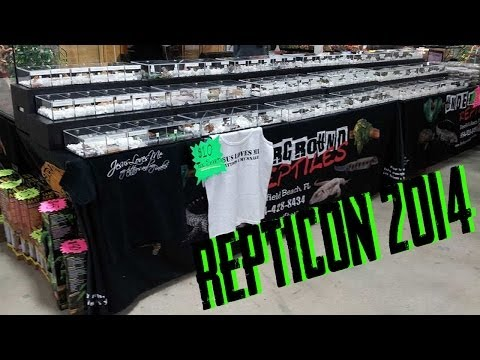 Repticon West Palm Beach 2014!!!- 20 Minutes Underground #58