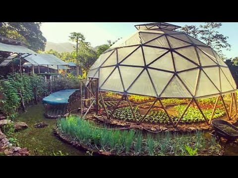 Tour This Permaculture Neighborhood w/ Costa Rica's Stephen Brooks
