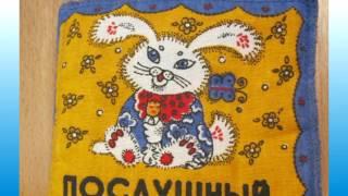 видео Музей зайцев