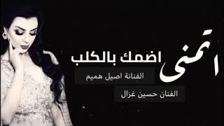 اغاني عراقية 2019 | اتمنى اضمك بالگلب