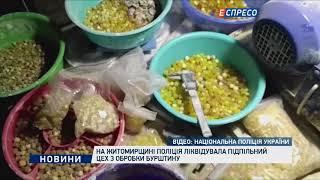 На Житомирщині поліція ліквідувала підпільний цех з обробки бурштину