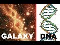 Most MYSTERIOUS Facts About DNA