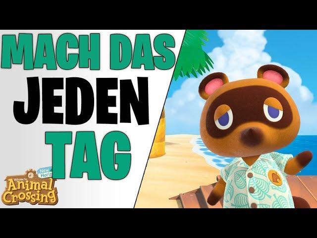 MACHT DIESE DINGE JEDEN TAG - Tipps für Regelmäßig Zocken | Animal Crossing New Horizons deutsch