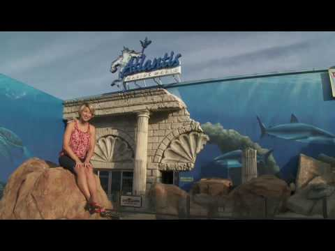 Travel Channel Visits Atlantis Marine World Youtube