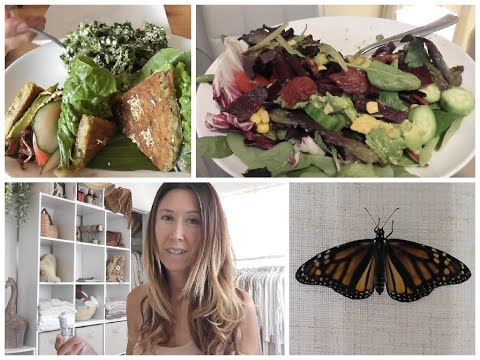 Vlog: Blogging Full-time, Annual Maui Plant Expo, Raising Butterflies