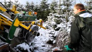 Palletizing Christmas trees at Collet Estate