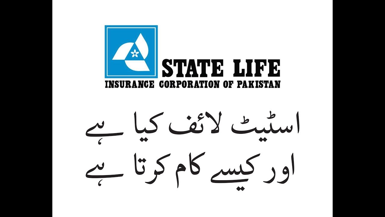 What Is State Life Insurance In Urdu Youtube