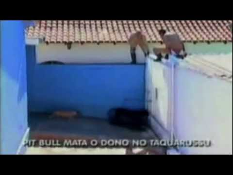 Pit Bull kills owner in Brazil!