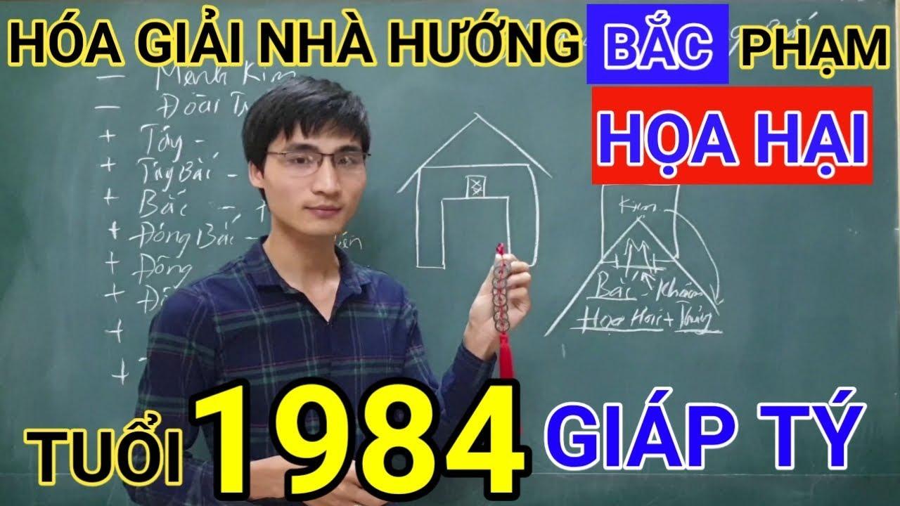 Tuổi Giáp Tý 1984 Nhà Hướng Bắc | Hóa Giải Hướng Nhà Phạm Họa Hại Cho Tuoi Giap Tí 1984