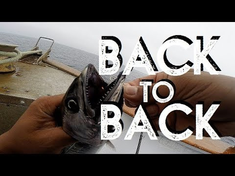 Back To Back | Dolphin | San Diego Fishing