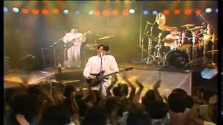Summer Tour '84 2ndシングル 作詞:松尾由紀夫 作曲:玉置浩二.