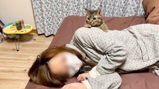 体調不良の飼い主を心配するフリして激しい匂いチェックをしにきた子猫w