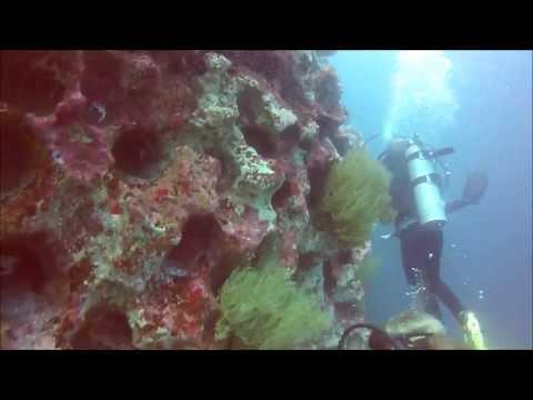 Diving Gordon Rocks - Santa Cruz Island, Galapagos HD